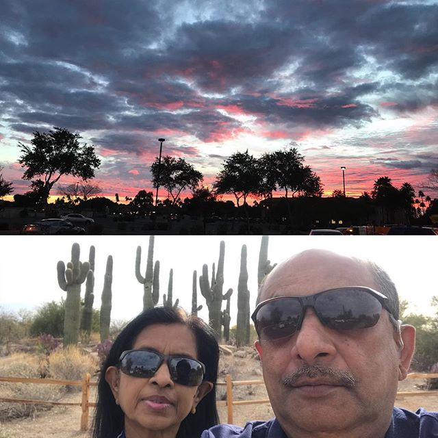 A day in our life in Gilbert - morning walk along organ pipe cactus and evening grocery shopping along lake.