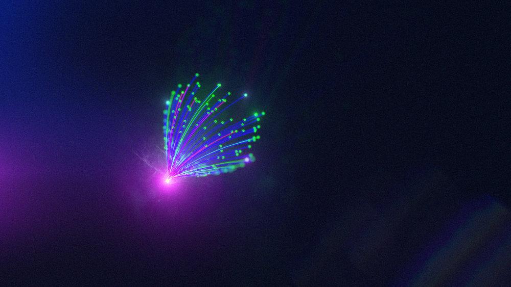 1_160315_Neon_Neon_5.jpg