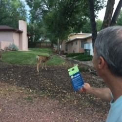 Campaigning with our deer friends!