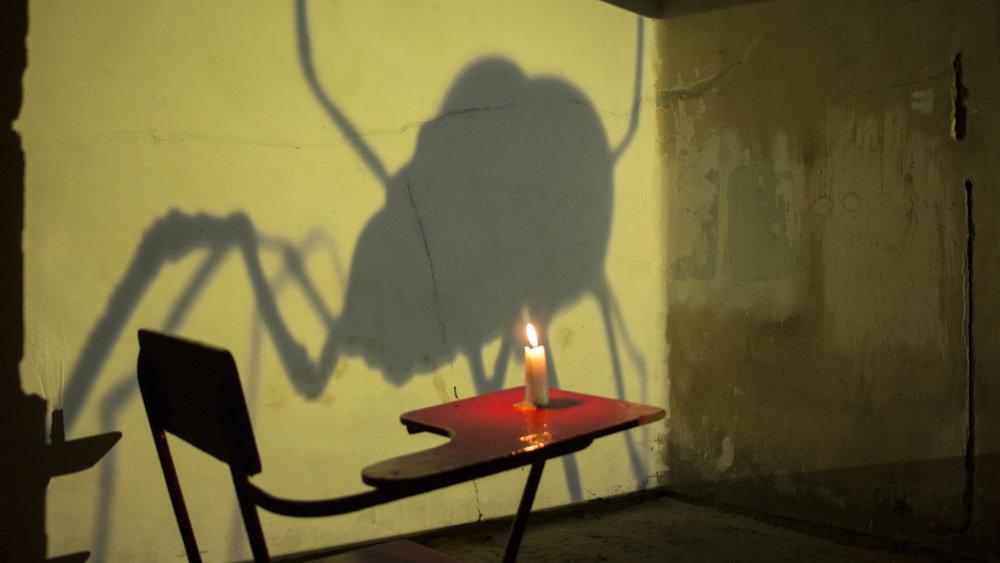 El cortejo a la hormiga roja - Lisbeth Carvajal Instalación 2018