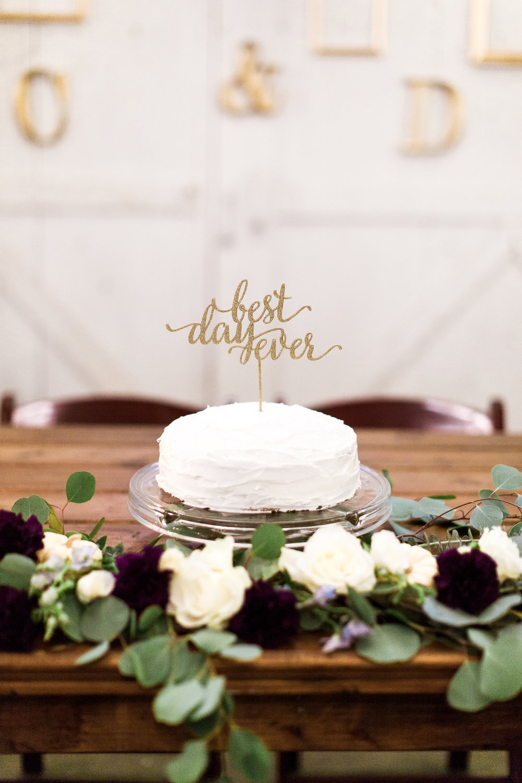AlessandraArendtPhotography_Copyright2016_Chris-and-Deena_Wedding_HighResolution-401.jpg