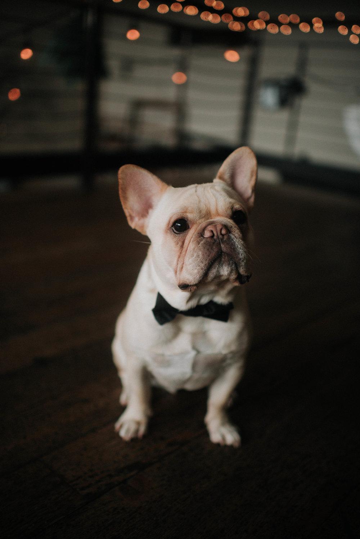 seattle-wedding-photographer-142.jpg