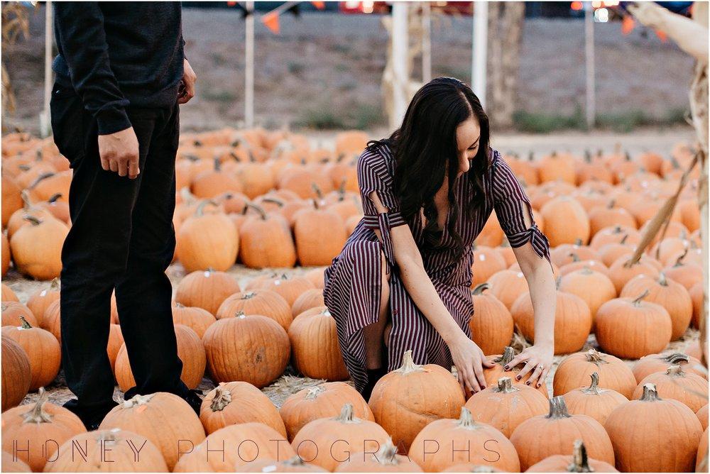pumpkinpatchengagementfallsession0025.JPG