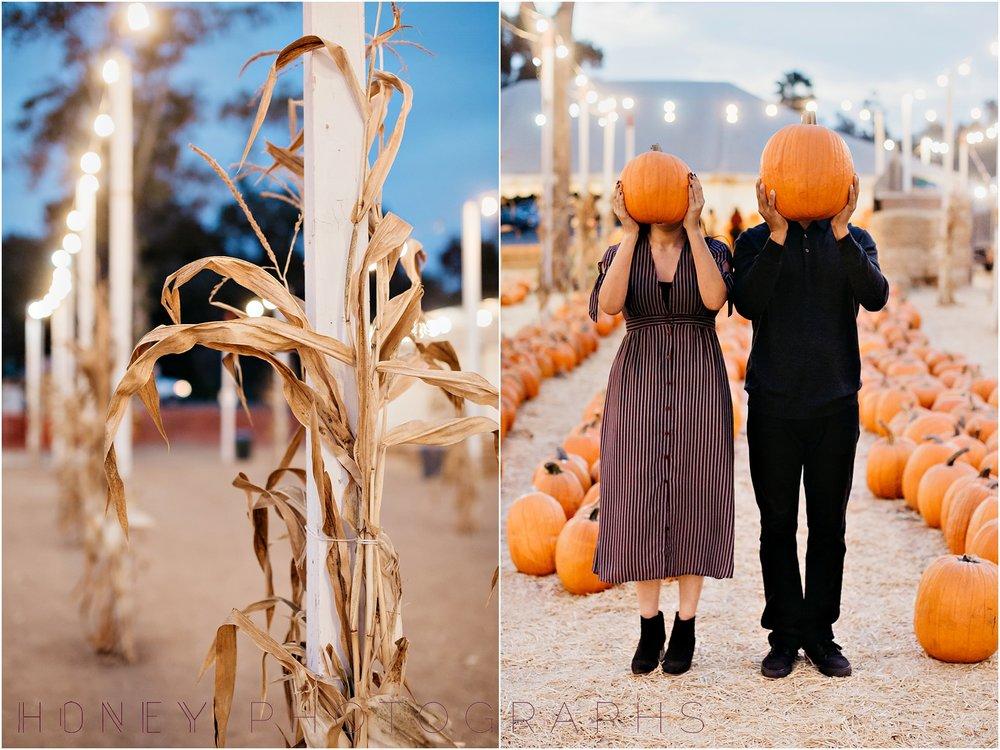 pumpkinpatchengagementfallsession0027.JPG