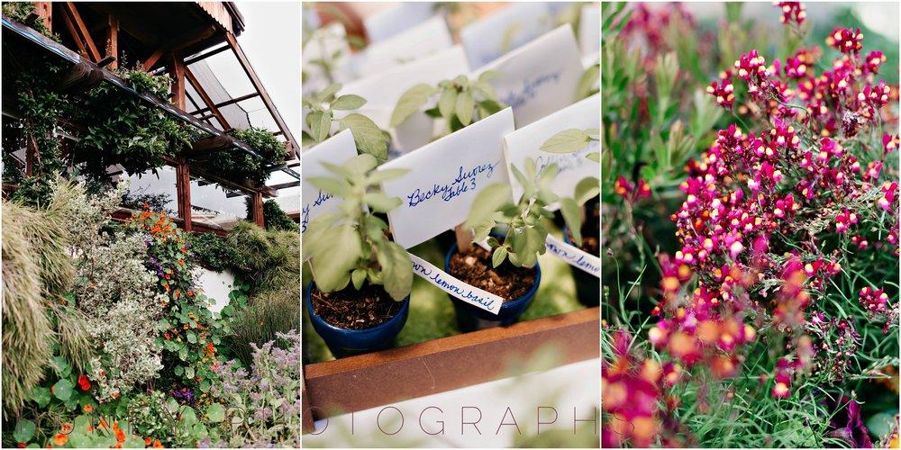 cambria-san-lois-obispo-wedding-garden-intimate41.jpg