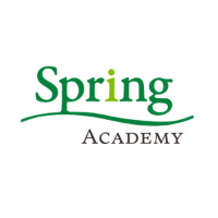 Spring Academy