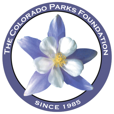 CSP Foundation copy.png