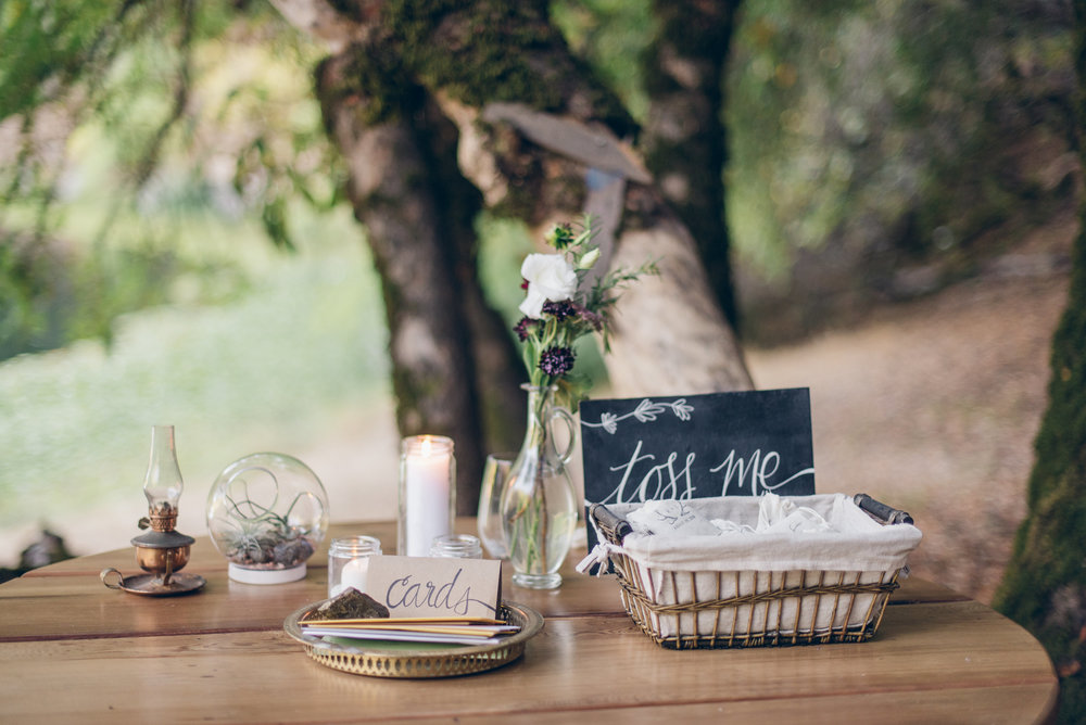 Wedding, August 2015 (Redwood Valley, CA)