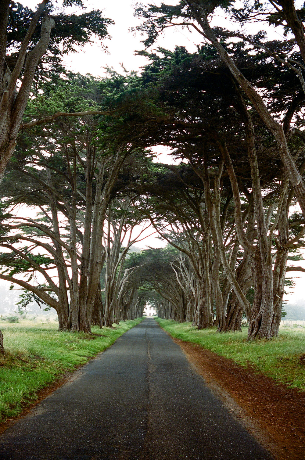 Lost Coast_Film_ 3481-2.jpg