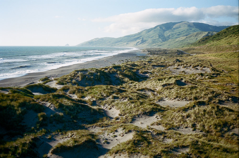 Lost Coast_Film_ 3481-13.jpg