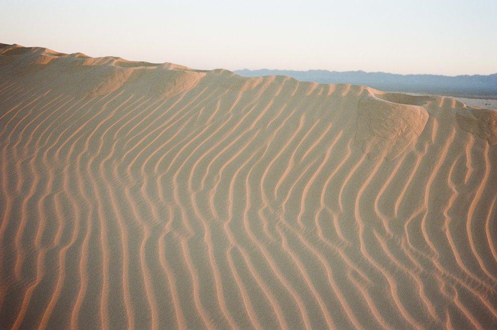 Sand Dunes_#9872-8.jpg