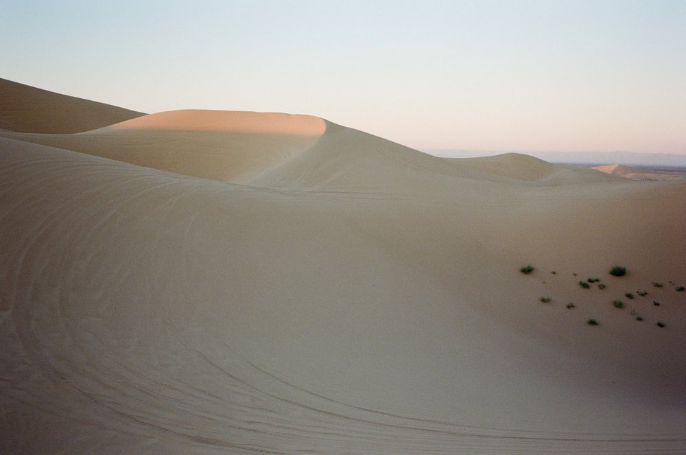 Sand Dunes_#9872-9.jpg