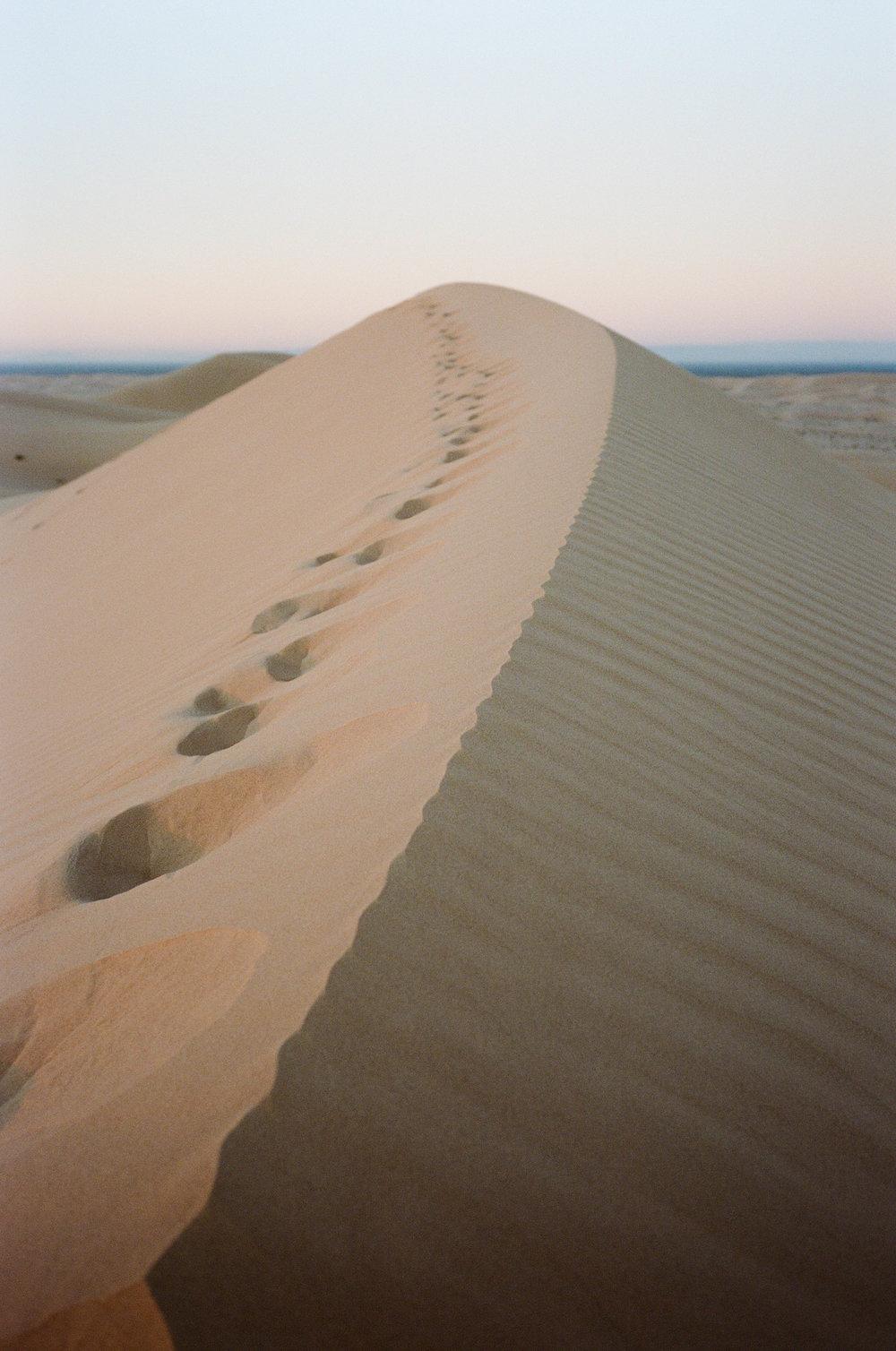 Sand Dunes_#9872-11.jpg