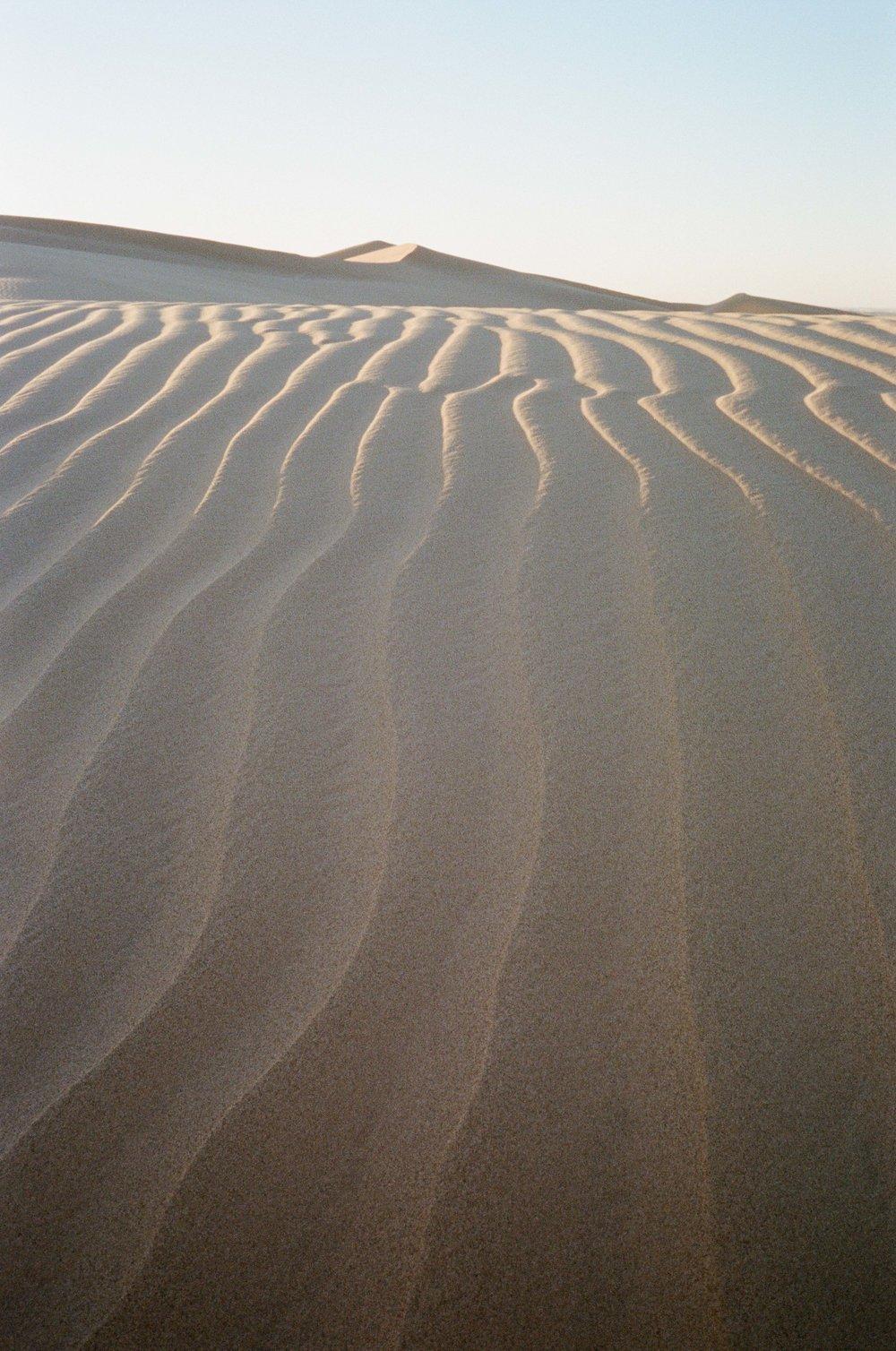 Sand Dunes_#9872-16.jpg