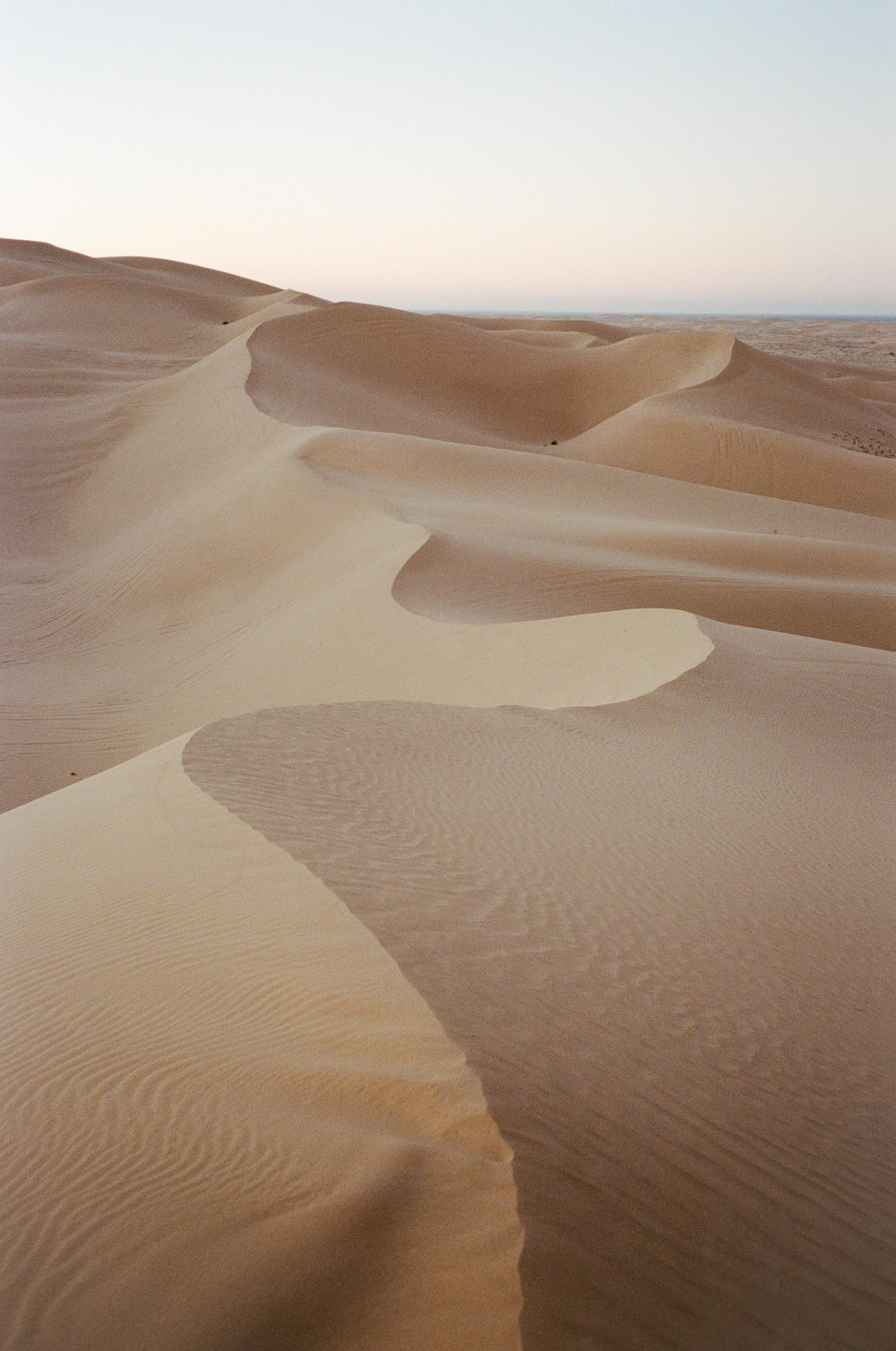 Sand Dunes_#9871-1.jpg