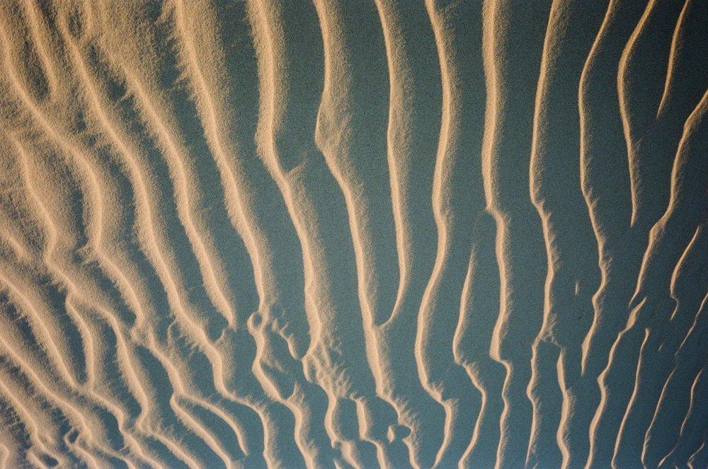 Sand Dunes_#9871-13.jpg