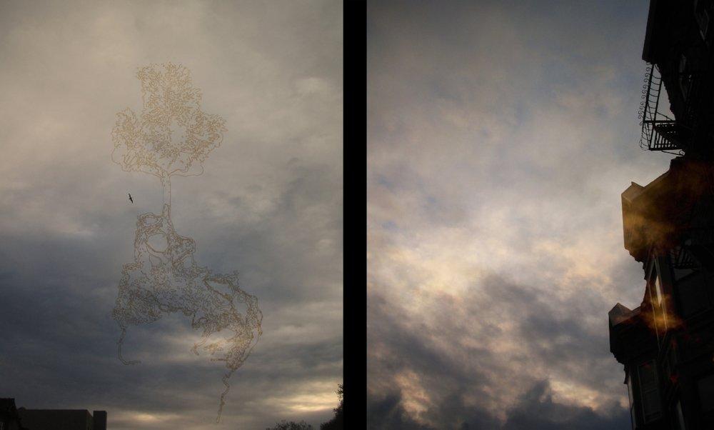 sky fly.jpg