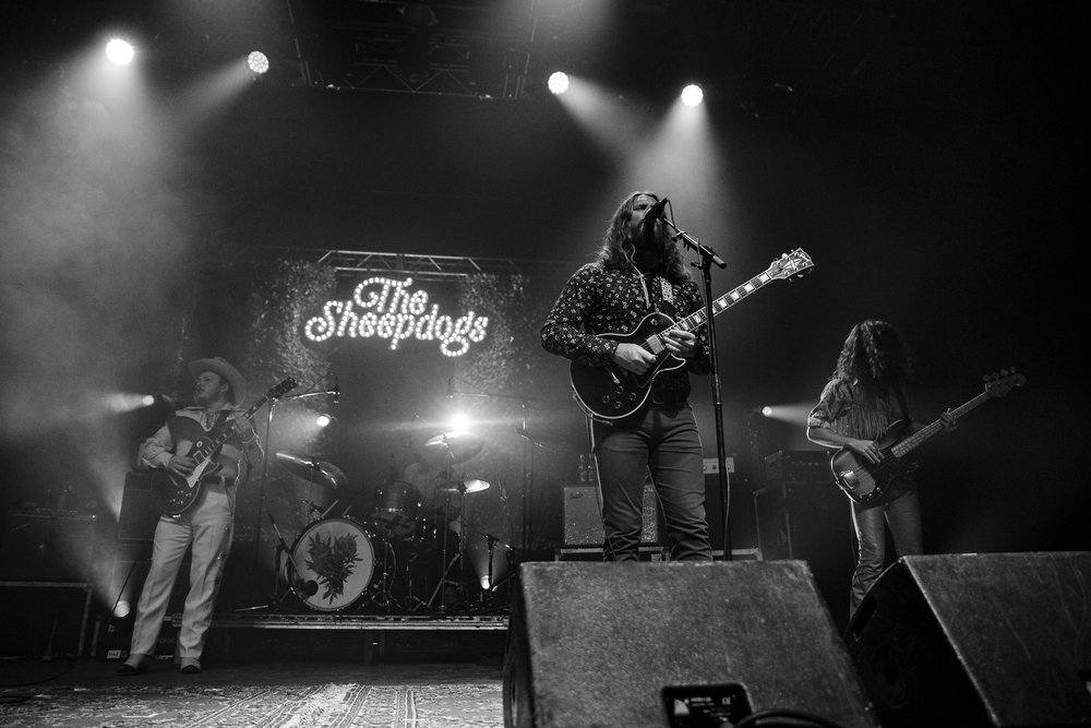 The Sheepdogs-9.jpg