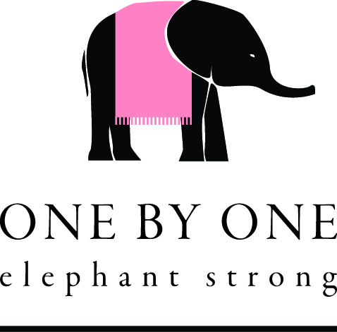 One By One - Wild Is Life Trust, Kiki's Zimbabwe and Birdwoods Zimbabwe are launching an art project aimed to raise awareness about elephant conservation and attract funds for non-profit Zimbabwean organizations, involved in elephant protection and conservation initiatives.