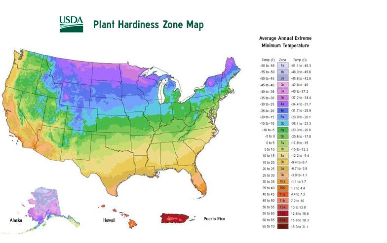 hardiness map.jpg