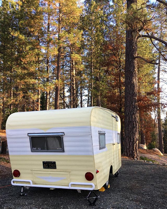 Rose enjoying the crisp, cold #nevadacity day at @inntowncampground! 💛 #burstwithjoy