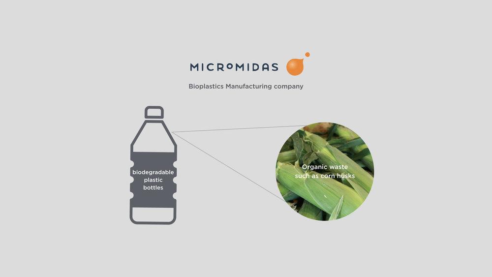 Micromidas.001.jpeg