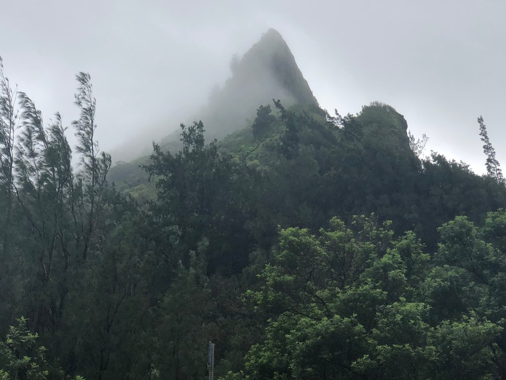 Misty mountain view from Nu'uanu State Wayside. I can imagine a gorilla colony up there.