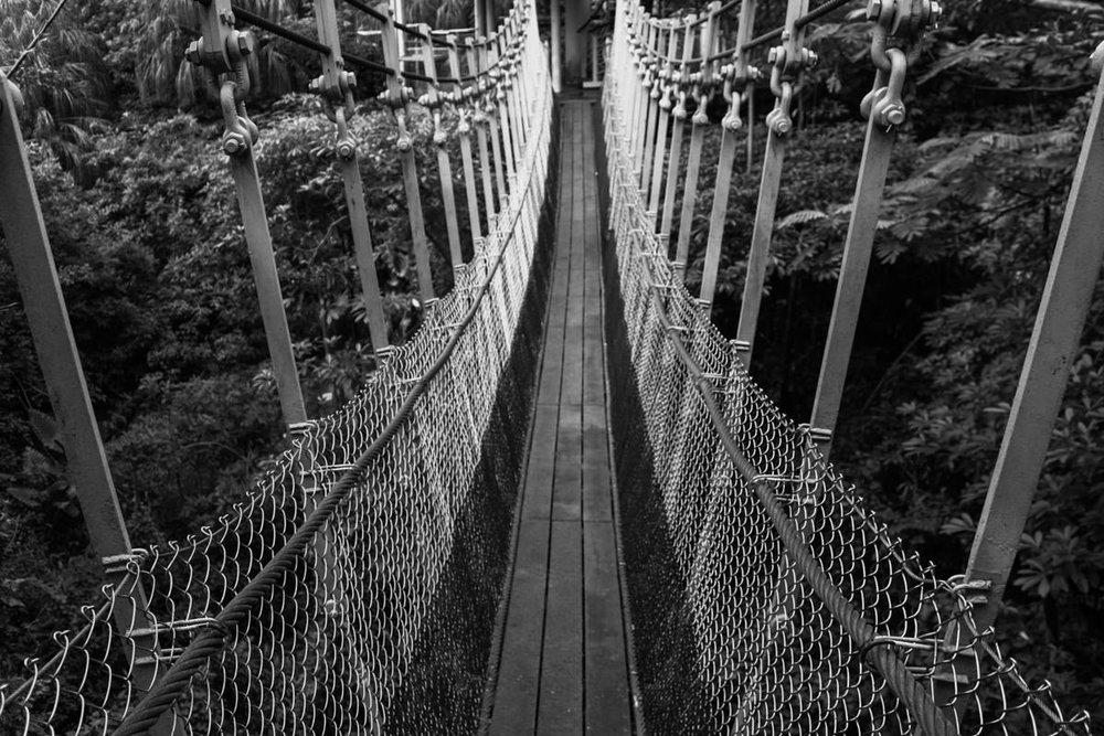 Footbridge - Senstosa Island, August 2010