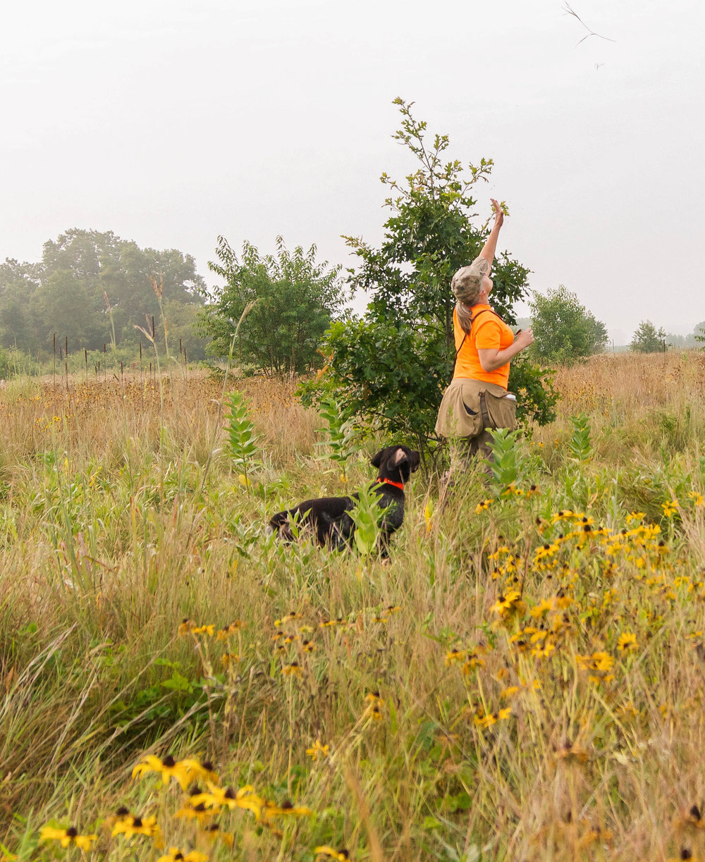 Hunting Programs - It is widely known that hunting participation significantly increases with the involvement of a mentor, someone knowledgeable about the outdoors and willing to teach and guide a youth or novice hunter in the field.FPGF financially supports mentored youth and novice hunting programs offered at events held at various facilities around the state. The one next to the Poynette Pheasant State Game Farm is at the 250 acre MacKenzie Center.  This facility has overnight lodging, trap range, commercial kitchen, and classroom. Consult the Calendar of Events to find the Friend's LTH Events and Datesdditional information on the Learn to Hunt (LTH) program is available on the WDNR web site.  If you are interested in participating in a Learn to Hunt program as a student please complete the FPGF LTH Reservation Application