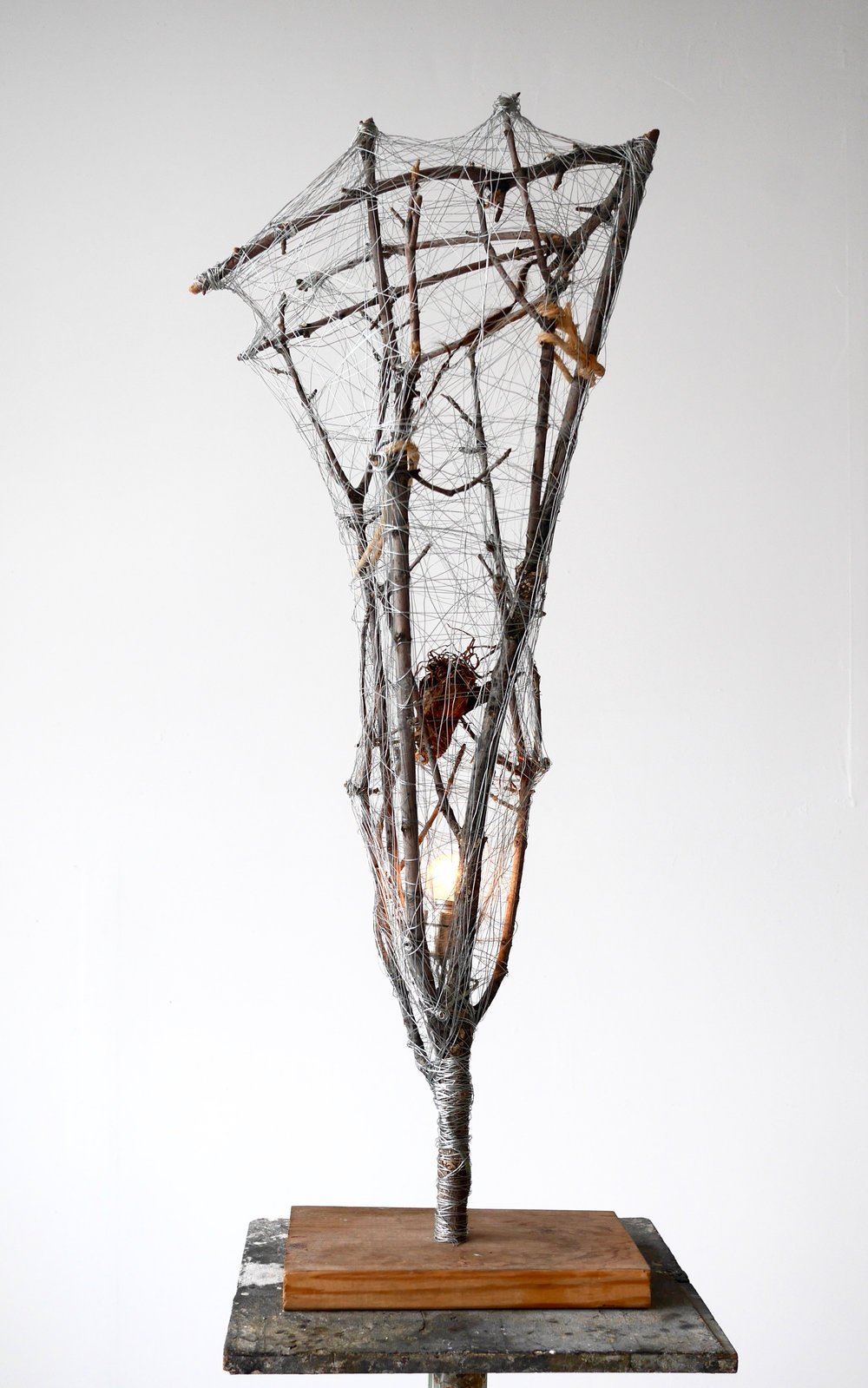 "Conductive Talisman  48"" x 24"" x 24""  Tree branch, rope, root, light bulb, steel wire, copper wire  (2015)"