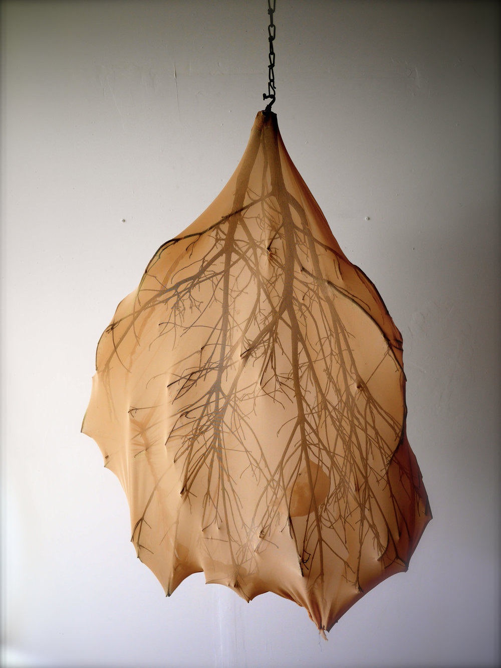 "Spiritus Rami  60"" x 48"" x 48""  Tree branch, nylon, polymer clay, LED light  (2014)"