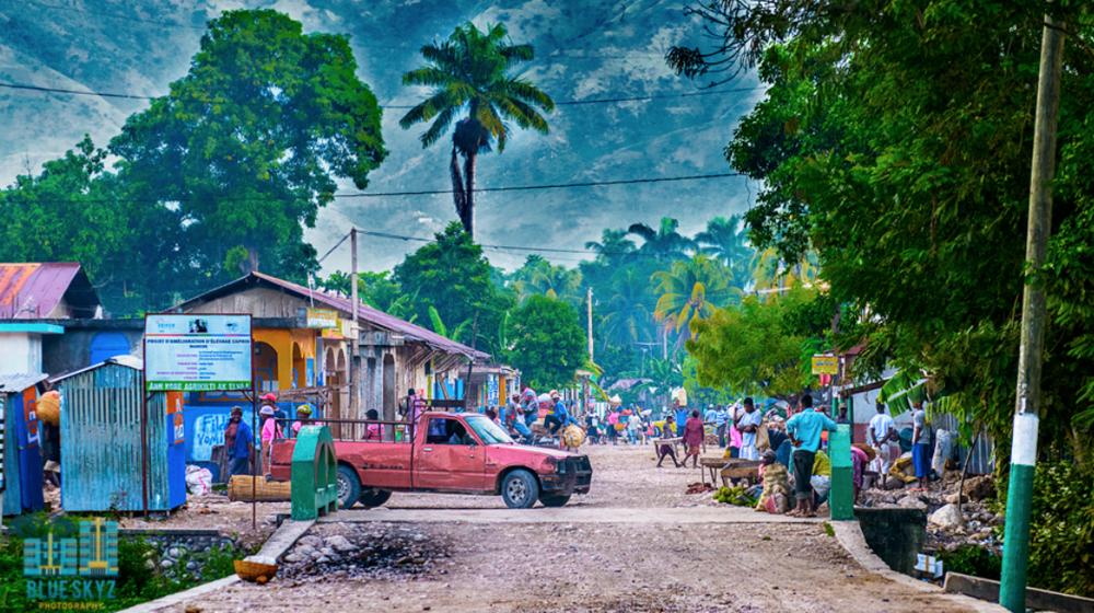 FINE ARTS - HAITI