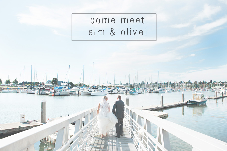 Photos by Elm and Olive 1