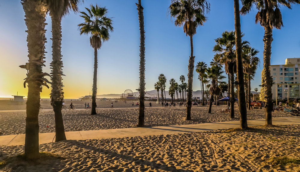 Palm trees, beach and Santa Monica boardwalk - what's more to love?