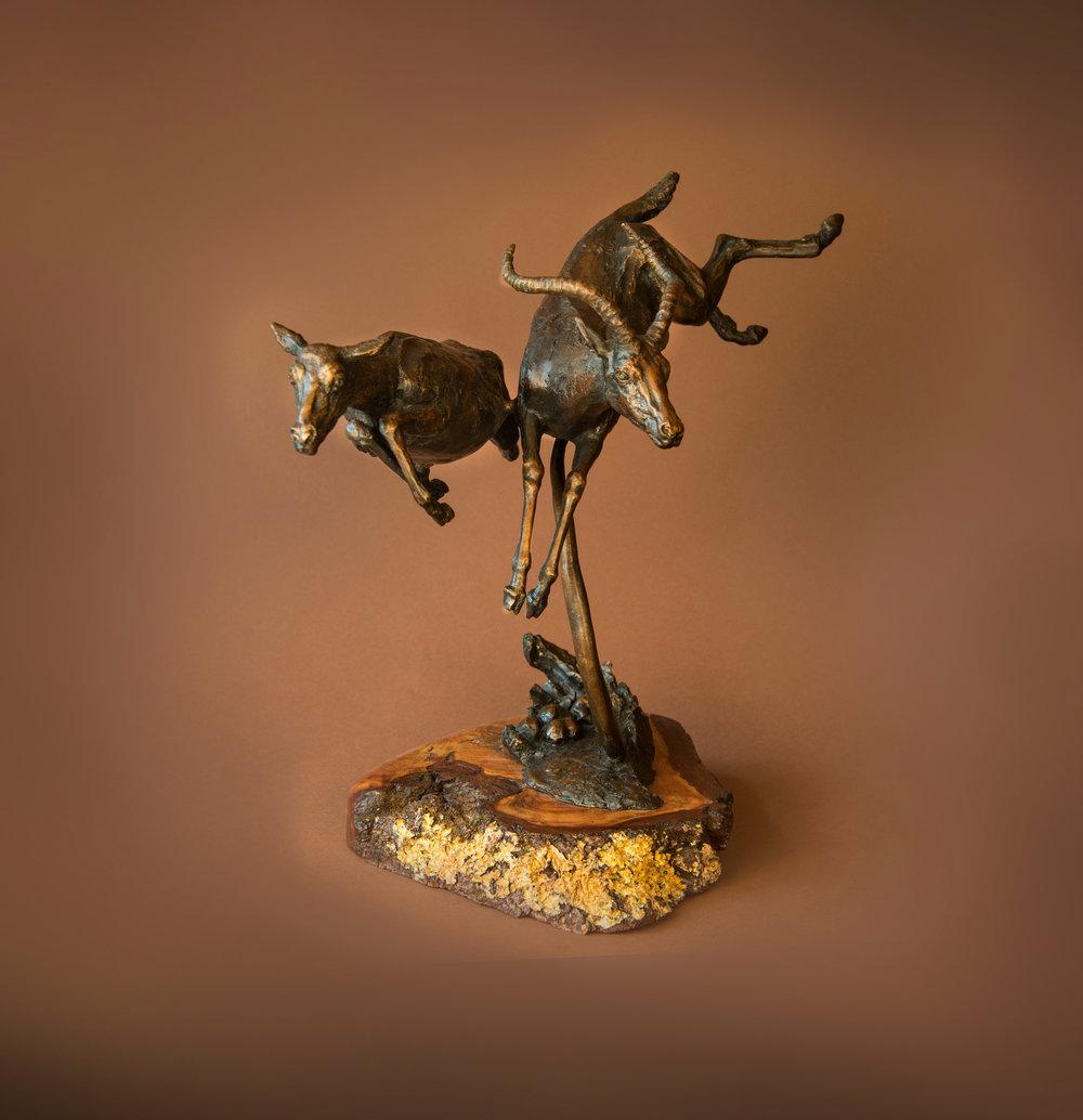 antelopes01 copy.jpg