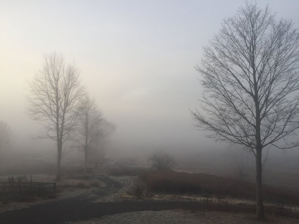 VANISHING POINT FARM -Highland, NY