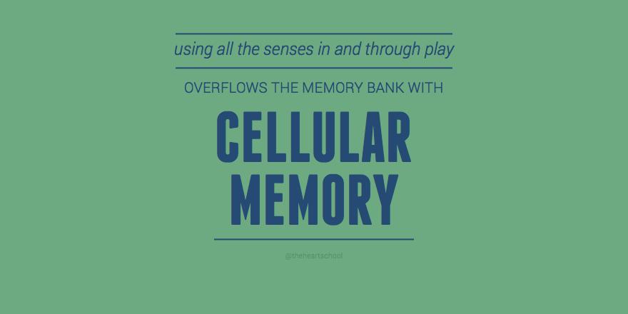 Cellular memory.png