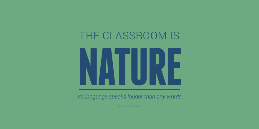 Classroom is nature.png