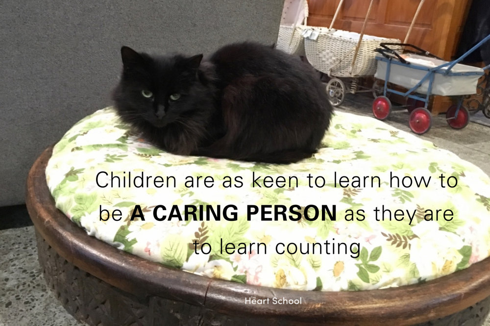 Animals bring a unique dimension to your place. Caring for animalsfosters a sense of responsibility and compassion. It encourages a respect and reverence for life and other living beings. At The Nest we have a cat. The children have learned to walk around Sassy, to not chase her around and never pull her tail, attitudes that foster a sense of inner discipline and empowerment. They feed and give her water, and gently move her away when she is in the way. They have developed a communal sense of responsibility that comes with taking care of an animal like Sassy. But caring for animals in an early childhood centre should not be taken lightly. Animals do need special care and attention, more than the 'pet in a cage' approach. Done well, keeping animals can be a most rewarding addition.