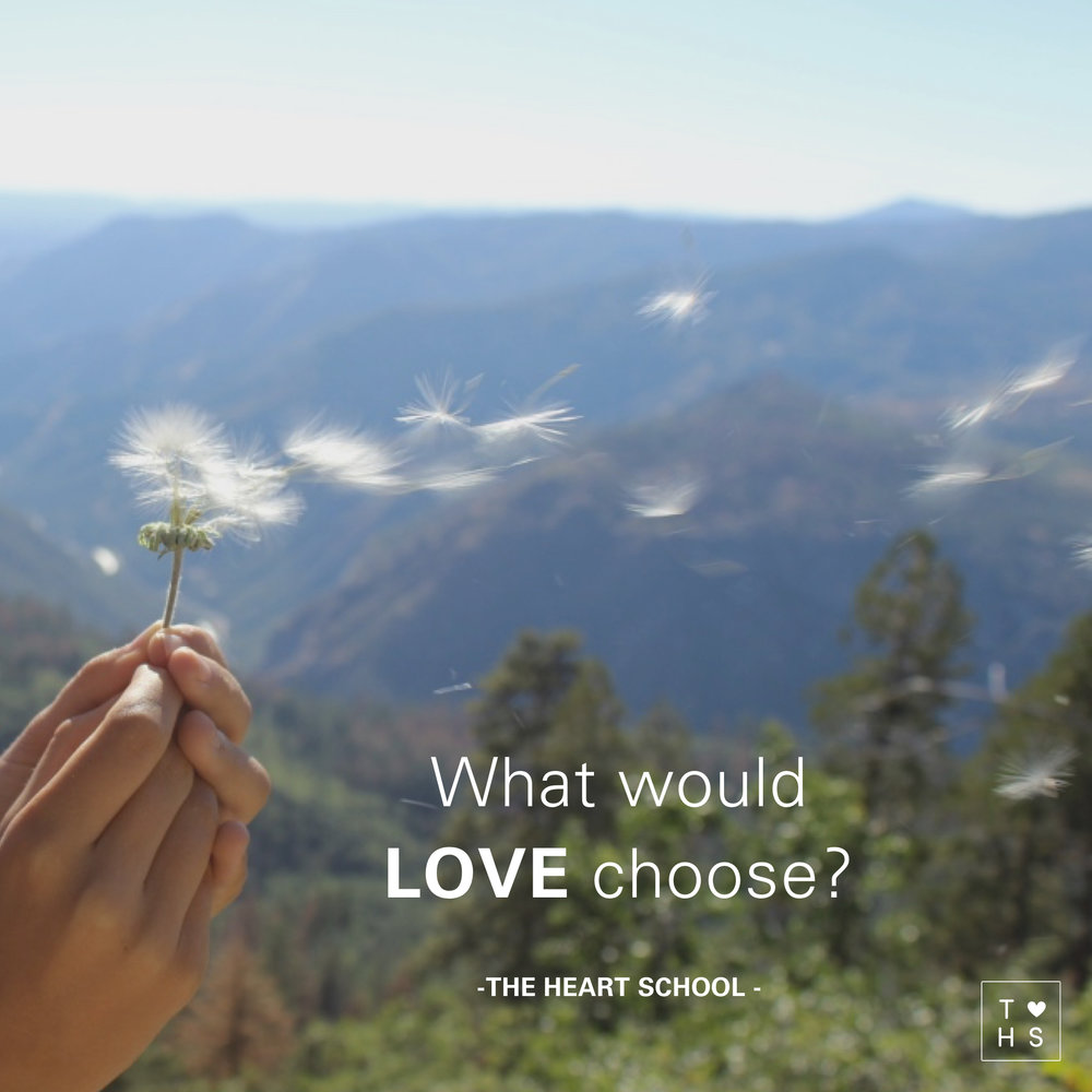 Shall I do this or that? Shall I go here or there? Shall I say yes or no? Decision making. We do it all the time, consciously and unconsciously. Often we engage the head to make the decision. What if today you consciously engage the heart?