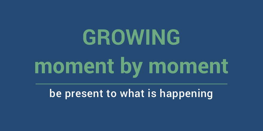Growing moment by moment.png