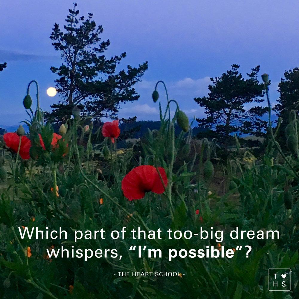 117 Big dreams.jpg