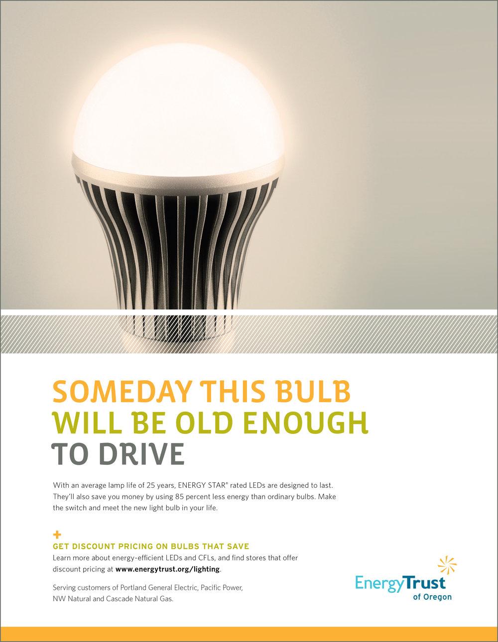 LEDbulb1.jpg