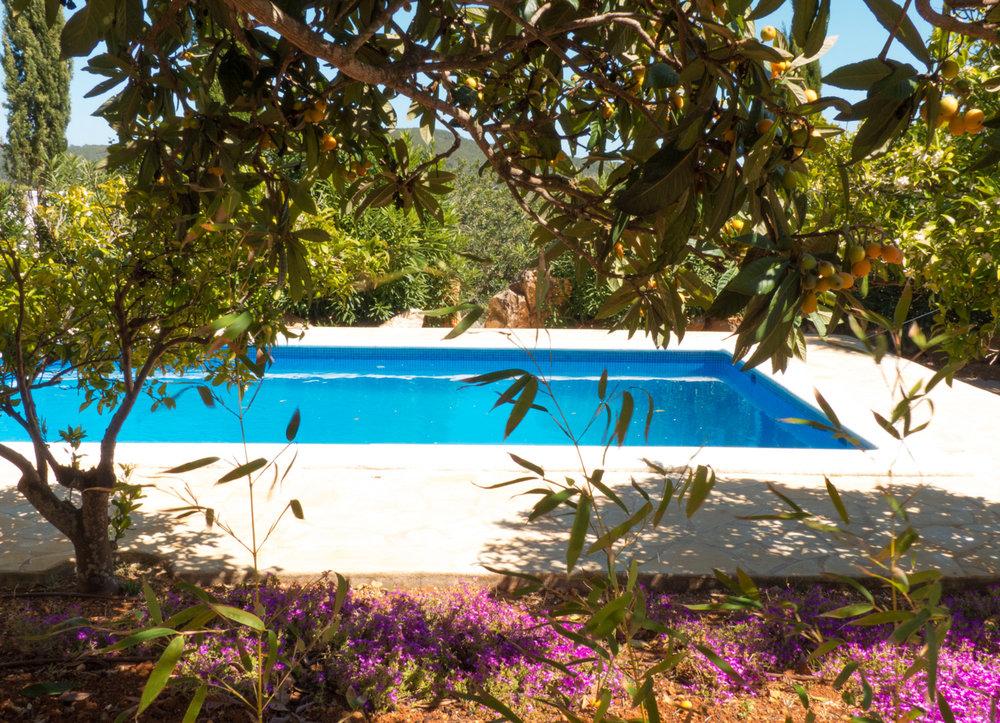 pool3(1).jpg
