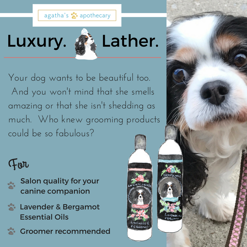 dog shampoo luxury lather