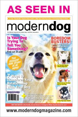 Agatha's Apothecary As Seen In Modern Dog Magazine