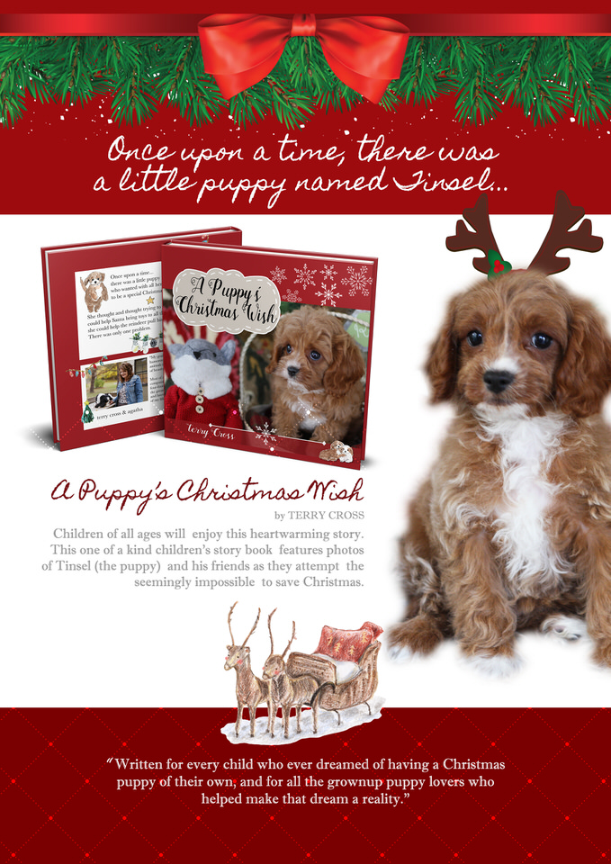 Children's Dog book Christmas Puppy Story