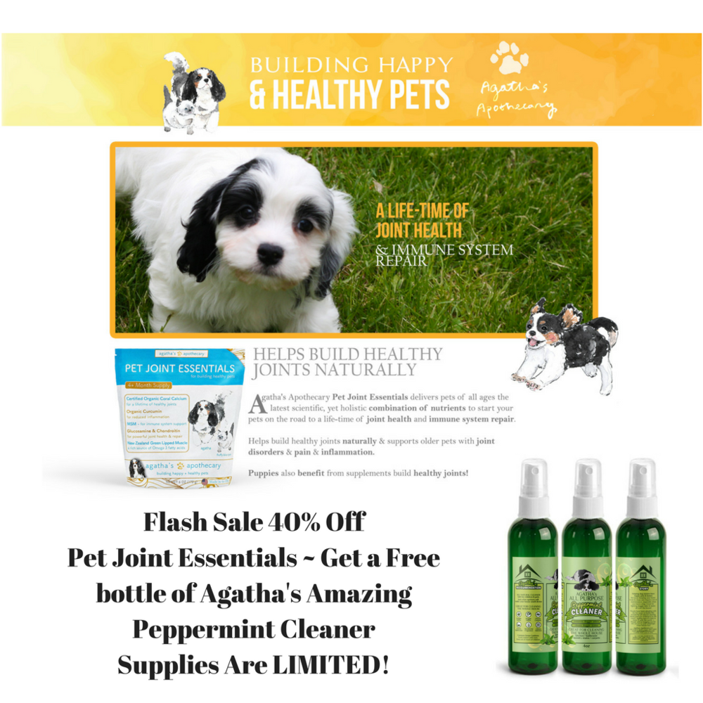 Thru February 40% Off Pet Joint Essentails.png
