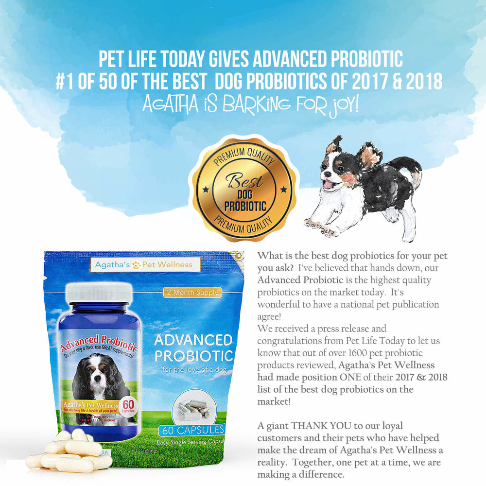 Agatha's voted best dog probiotic by Pet Life Today two years in a row!