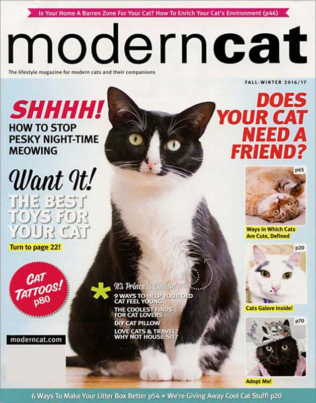 cat_magazine.jpg